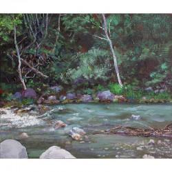 Cinca river